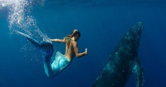 70 persen dari isi lautan dihuni oleh dua triliunan spesies biota laut