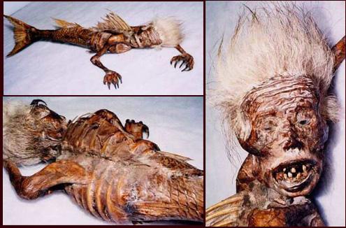 mummi ikan duyung berumur sekitar 4.000 tahun.