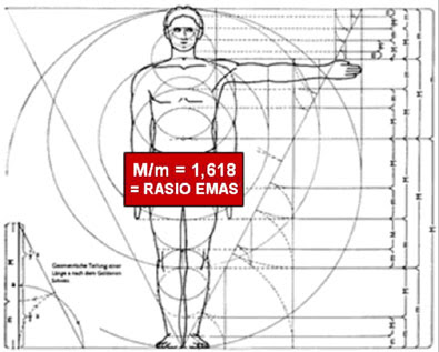 Semua perbandingan ukuran tubuh manusia adalah 1.618. benarkah? silahkan membuktikannya