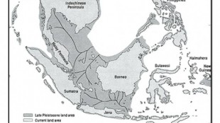 Asal Mula Paparan Sunda ( Sundaland )