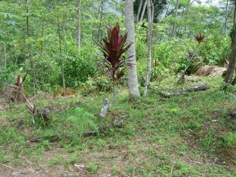 Lima Makam Tua Ditemukan Di Teras Kelima Situs Gunung Padang