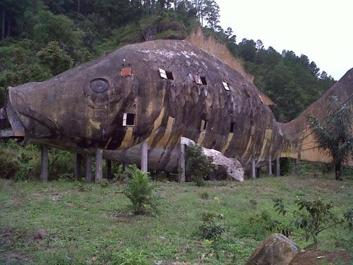 DolokTolong: Misteri Ikan Raksasa di Dasar Danau Toba