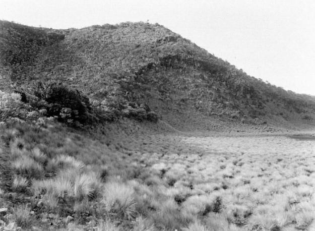 Kawah tua  Telaga Kuning tahun 1910