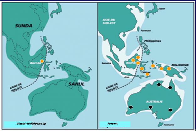 Superfloods Global Sebabkan Paparan Sunda Terendam