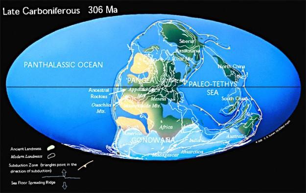 era Paleozoic, era setelah Neoproteozoic
