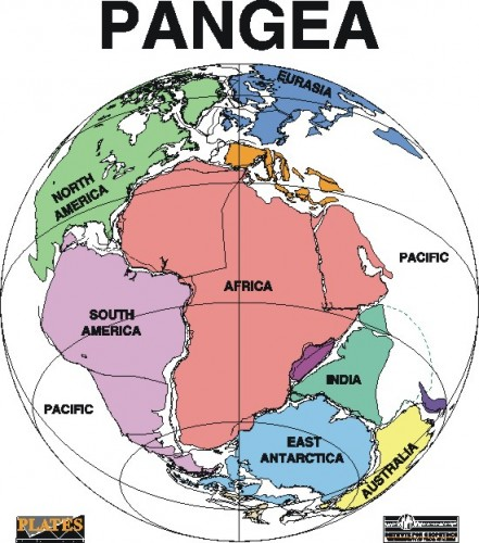 Superbenua Pangea