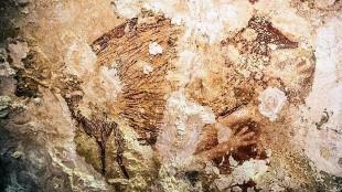Lukisan Gua Prasejarah Indonesia Paling Tua Sejagad